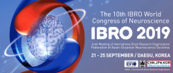 IBROcongress2019banner